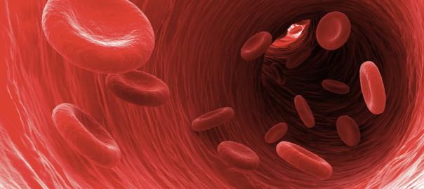 BloodViscosity (1)